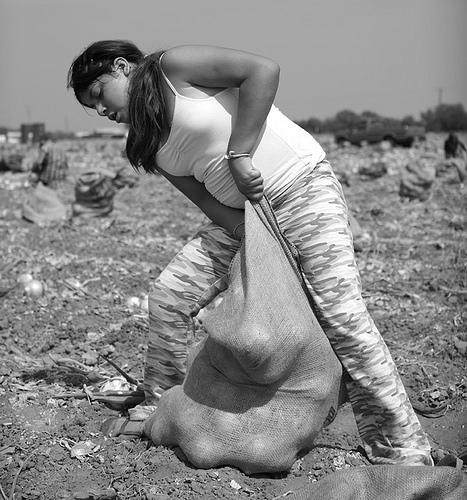 美國年僅12歲的農業童工,工作時的身影  (圖片來源:天馬行空數位有限公司)